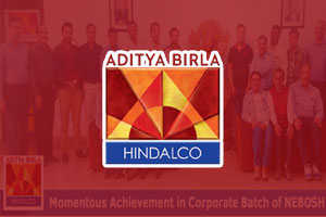 aditya-birla-hindalco-corporate-300x200